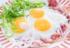 Tocino de la pizca de los huevos fritos Fotografía de archivo libre de regalías