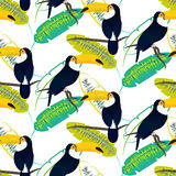 Toco toucan bird on banana leaves seamless vector pattern. Stock Image