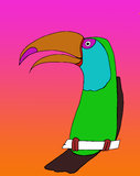 Toco Toucan. Colorful hand-drawn toucan with orange and pink background Royalty Free Stock Photography