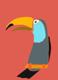 Toco Toucan. Colorful vibrant hand-drawn Stock Photography