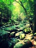 Toczna woda nad skałami Obraz Royalty Free
