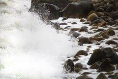 Toczne rozbija fala na otoczakach na plaży przy Clarence przejażdżką między Kleinmond i Gordons zatoką, Zachodni przylądek, Połud fotografia stock