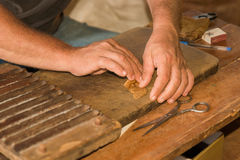 Toczni kubańscy liście dla robić cygaru Fotografia Royalty Free