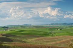 Toczni wzgórza Zdjęcie Royalty Free