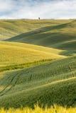 Toczni wzgórza Tuscany obraz stock