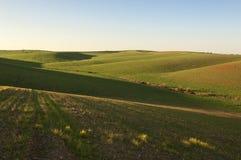 Toczny krajobraz Zdjęcie Stock
