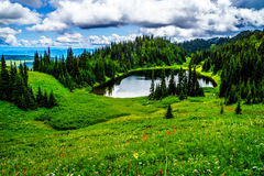 Tod Lake surrounded by wildflower filled alpine meadows near the top of Tod Mountain in the Shuswap Highlands Stock Photography