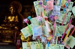TOD PHA PA pieniądze drzewo Zdjęcia Royalty Free