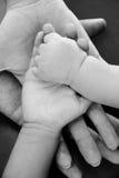 Toda a família que se importa com o recém-nascido Fotos de Stock Royalty Free