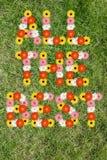 Toda la mejor buena suerte desea con el prado de la naturaleza de la flor de las flores Imagen de archivo