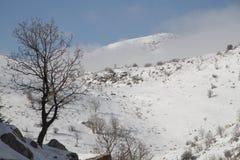 Toda la nieve blanca en el cable del monte Hermón muy hermoso foto de archivo libre de regalías