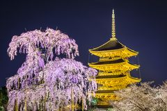 Todai-ji Pagoda in the Spring Stock Photography