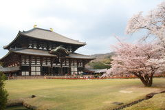 Todai-ji Stock Photo