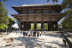 Todai-ji temple gate, Nara, Japan. Gate to Buddhist temple Todai-ji with touris and deers in foreground in Nara park, Japan Stock Photography