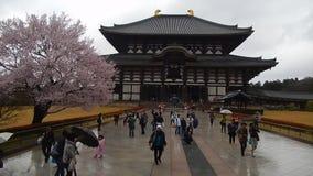 Todai Temple, Nara, Japan stock footage