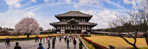 Todaiji tempel under våren i Nara, Japan Royaltyfria Bilder