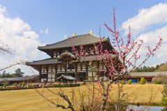 Todaiji temple, Nara, Japan. UNESCO site Royalty Free Stock Photography