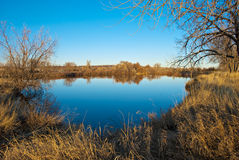 Todavía borre el lago azul en la pradera fotos de archivo