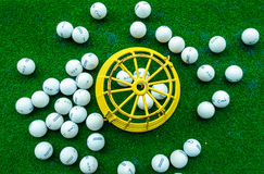 Todavía categorías: Celina Lynx Golf Course Fotos de archivo libres de regalías