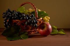 Todavía cesta de fruta de la vida Fotografía de archivo
