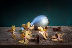 Todavía cesta de la flor de la vida Foto de archivo libre de regalías