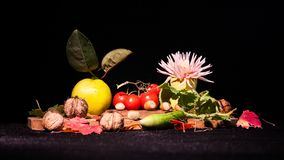 Todavía composición de la vida con las frutas y verduras Fotos de archivo libres de regalías