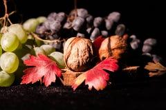 Todavía composición de la vida con las frutas y verduras Imágenes de archivo libres de regalías