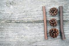 Todavía composición de la vida con los conos del pino y los palillos de madera Fotografía de archivo