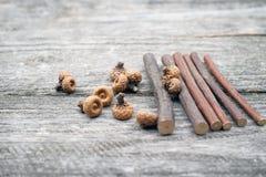 Todavía composición de la vida con los conos del pino y los palillos de madera Imagen de archivo