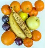 Todavía composición de la vida hecha con la fruta fresca del invierno estacional delicioso foto de archivo libre de regalías
