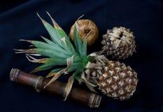 Todavía concepto de la fotografía de la vida con la fruta seca en fabri azul marino Imagen de archivo libre de regalías
