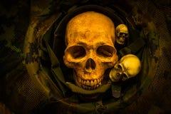 Todavía cráneo de la vida Foto de archivo libre de regalías