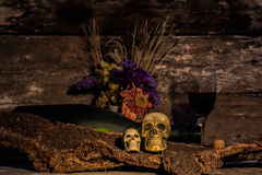 Todavía cráneo de la vida con la botella de vino Foto de archivo