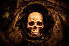 Todavía cráneo del soldado de la vida Foto de archivo