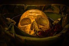 Todavía cráneo del soldado de la vida Fotografía de archivo