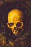 Todavía cráneo del soldado de la vida Fotografía de archivo libre de regalías