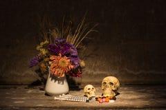 Todavía cráneo o de la vida Imagenes de archivo