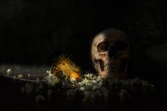 Todavía cráneos y palmatoria de la vida imagen de archivo