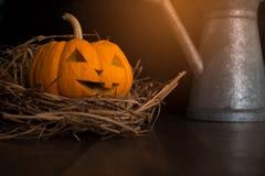 Todavía de Halloween vida con las calabazas en piso de madera Fotos de archivo libres de regalías