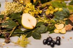 Todavía de la caída vida con la pera, las uvas y las hojas Fotografía de archivo