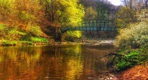 Todavía de la calma el río Imagen de archivo libre de regalías