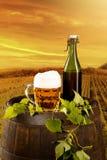 Todavía de la cerveza vida Fotos de archivo libres de regalías