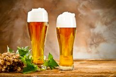 Todavía de la cerveza vida Imágenes de archivo libres de regalías