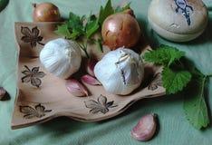 Todavía de la cocina vida que consiste en la verdura y las hierbas sanas para la salud - bálsamo del ajo, de la cebolla, del apio Fotografía de archivo