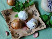 Todavía de la cocina vida - verdura e hierbas para la salud - bálsamo del ajo, de la cebolla, del apio y de limón Fotos de archivo libres de regalías