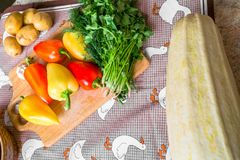 Todavía de la cocina vida Verduras crudas frescas en la tabla Imagen de archivo libre de regalías