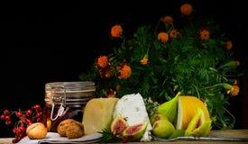 Todavía de la comida vida con la baya, los higos, la nuez, el queso y la especia Fotos de archivo libres de regalías