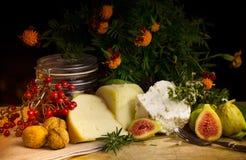 Todavía de la comida vida con la baya, los higos, la nuez, el queso y la especia Fotografía de archivo