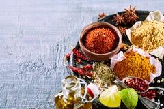Todavía de la comida vida con una variedad de especias asiáticas Imágenes de archivo libres de regalías