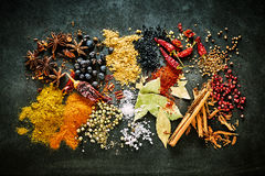 Todavía de la comida vida de especias aromáticas y acres Foto de archivo libre de regalías